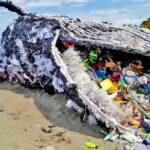 Dérèglement-climatique-12-photos-qui-le-prouve