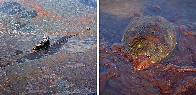 pollution-pétrole
